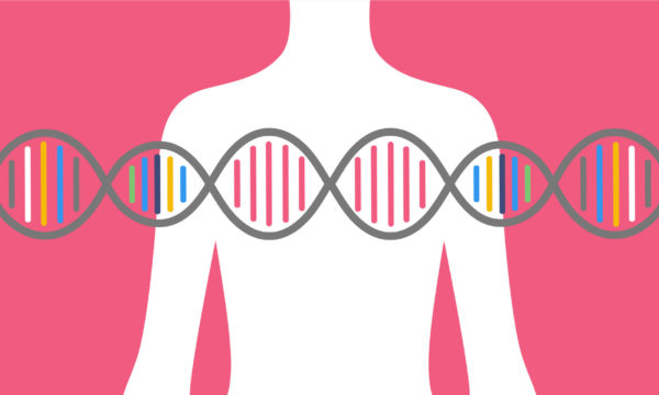 BRCA1, BRCA2