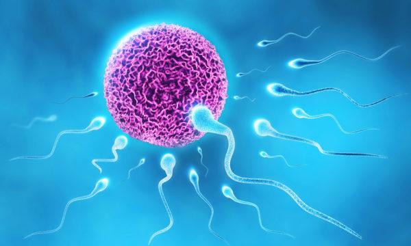 εξέταση σπέρματος