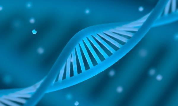 HPV DNA Test