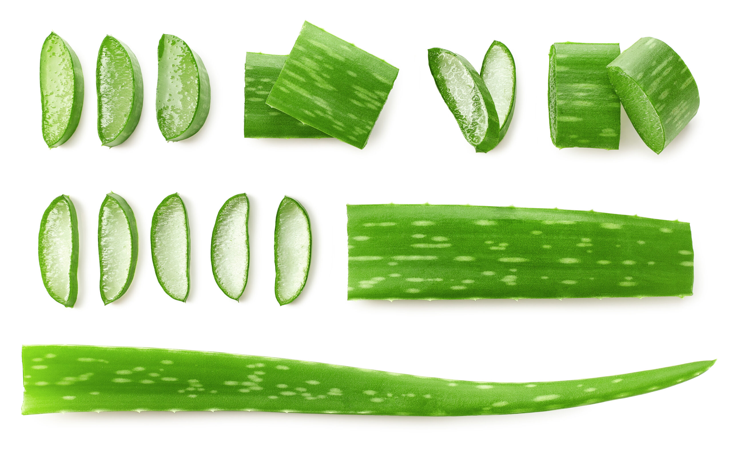 Αλόη βέρα φυτό