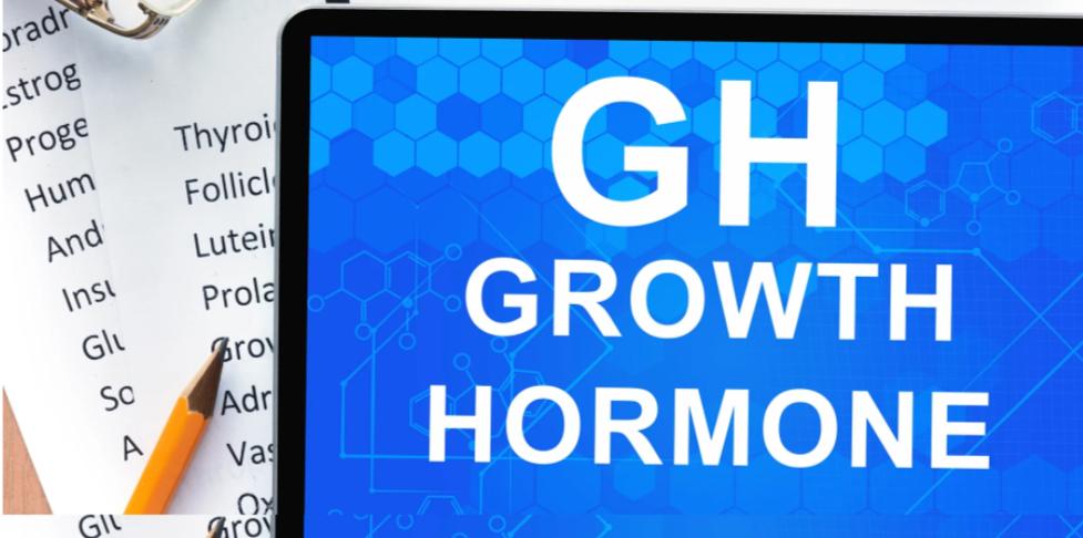 Μοντέλο αυξητικής ορμόνης