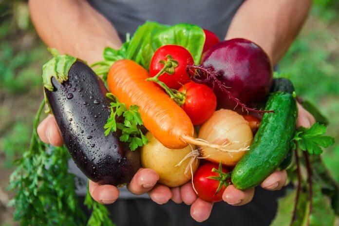 Γυναίκα κρατάει στα χέρια τις διάφορα λαχανικά