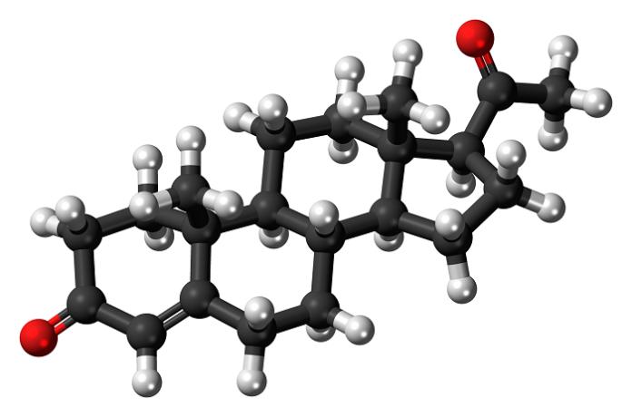 Τρισδιάστατο μοντέλο προγεστερόνης