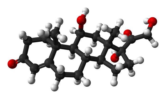 Τρισδιάστατη απεικόνιση της κορτιζόλης
