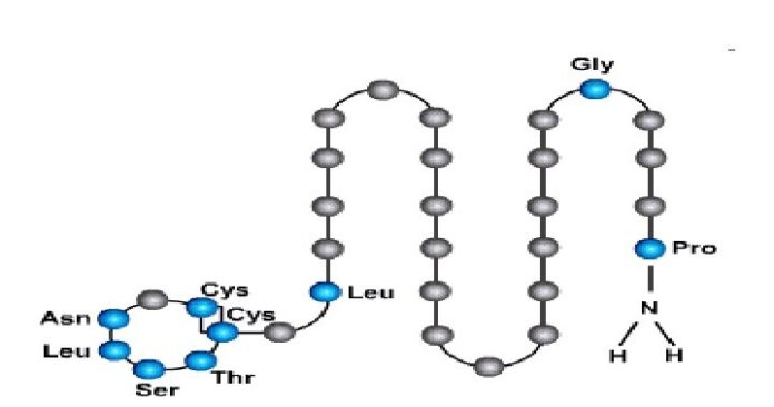 Η χημική σύνθεση της καλσιτονίνης
