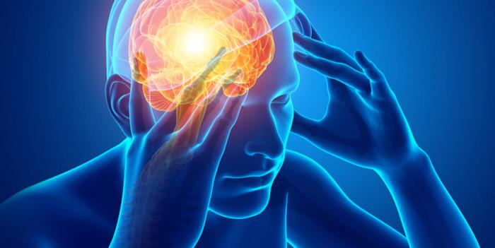 Επίδραση της κορτιζόλης στον εγκέφαλο