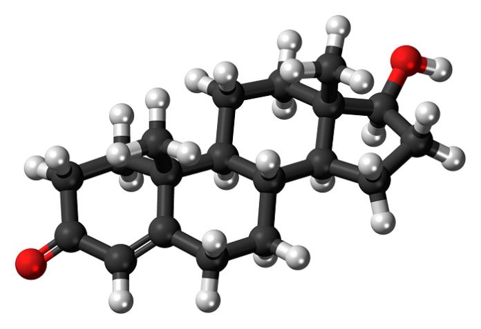 Τρισδιάστατο μοντέλο τεστοστερόνης