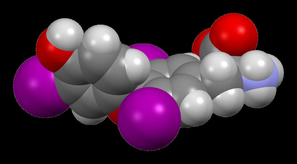Μοντέλο Τριιωδοθυρονίνης ορμόνης τρισδιάστατο μοντέλο
