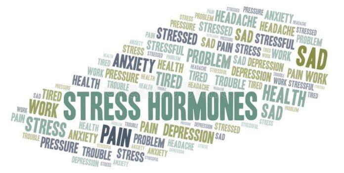 banner για τις ορμόνες άγχους