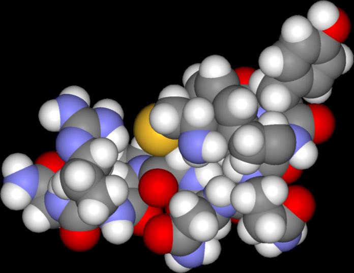 Αντι-διουριτική ορμόνη τρισδιάστατο μοντέλο