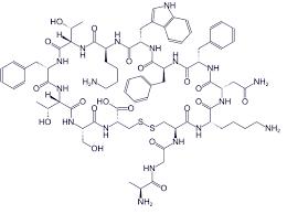 Τρισδιάστατη δομή σωματοστατίνης