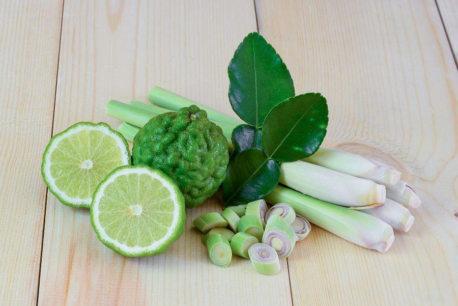lemonoxorto