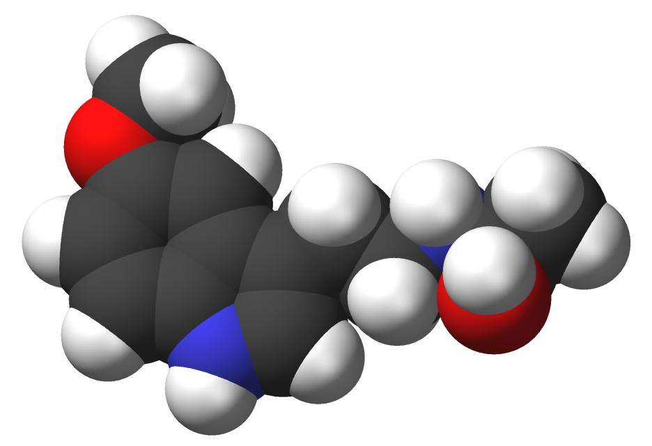 Τρισδιάστατο μοντέλο της μελατονίνης