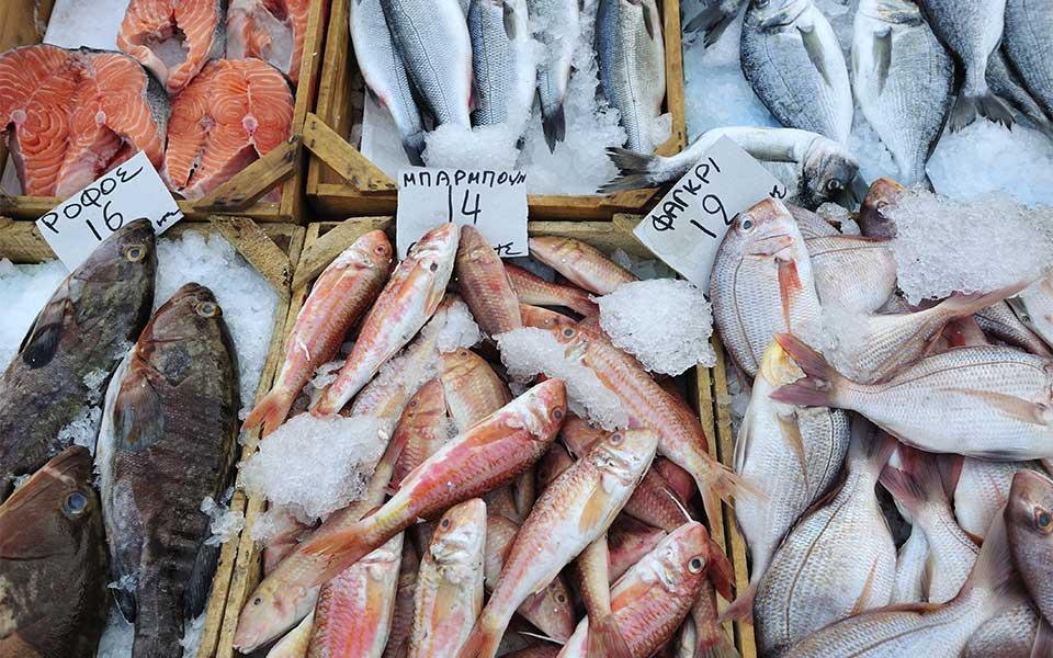 ψάρια στην διατροφή