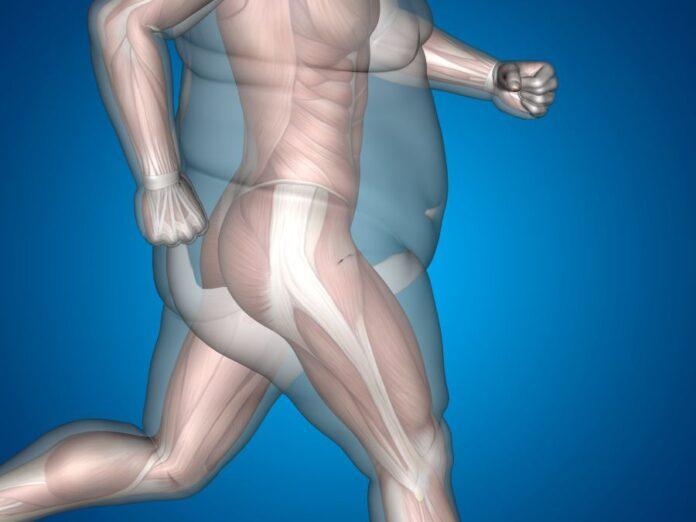 somatiko lipos